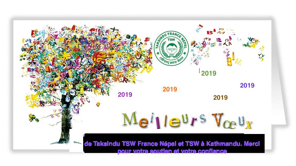 Carte voeux 2019 tsw 1